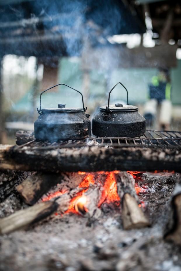 Cuisine-sauvage2-lacabane-anti-gaspi-blog