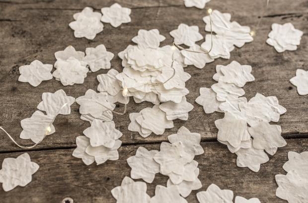 growing-paper-antigaspi-blog_5